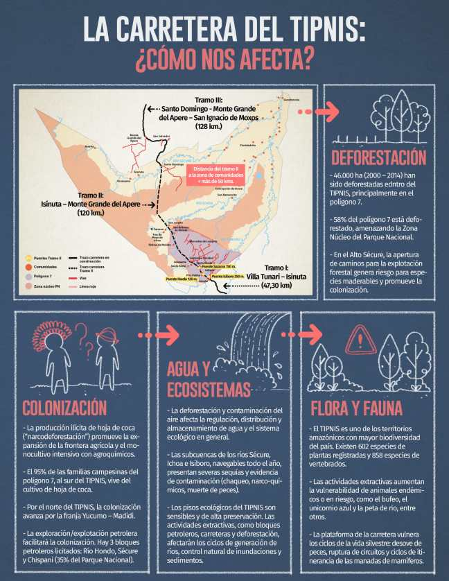 infografia tipnis 01-1