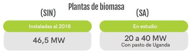 biomasa-31