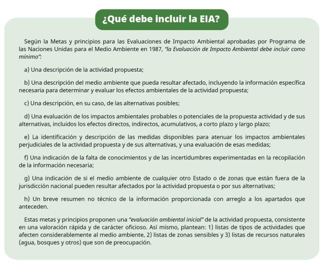 que debe incluir la EIA